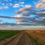 Landschaft Landwirtschaft 213364_640